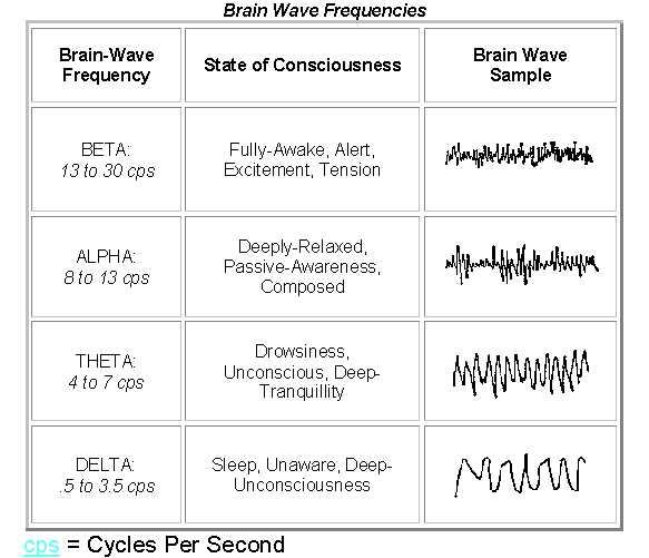 BrainStates