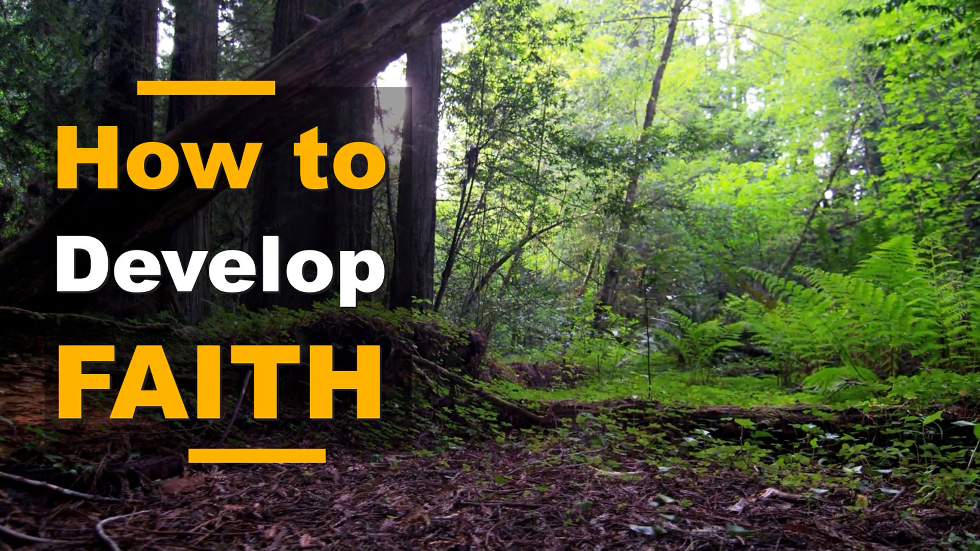 How to Develop Faith